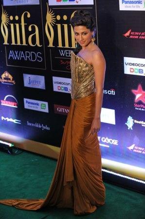 Chitrangada_Singh-_at_IIFA_Awards_2012.jpg